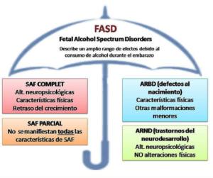 Transtornos del Espectro Alcohólico Fetal
