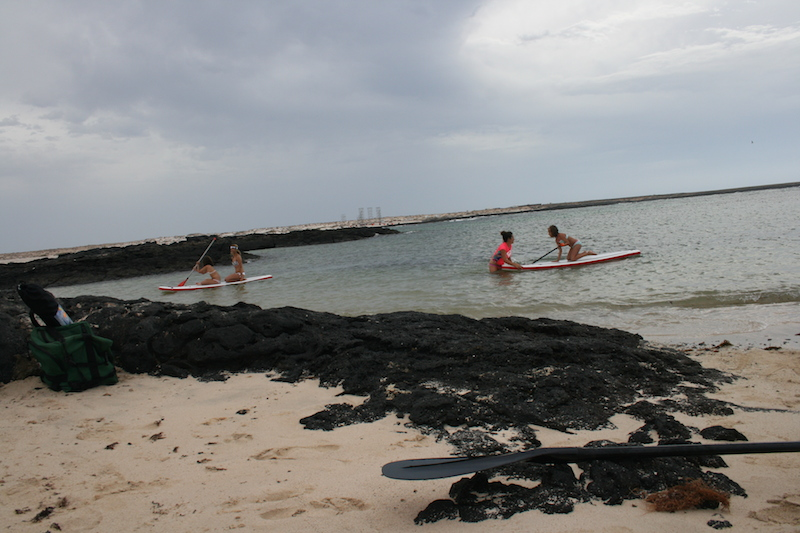 Paddle en Surfing4All